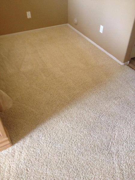 carpet-1-after