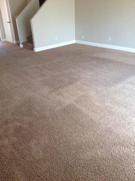 carpet-2-after