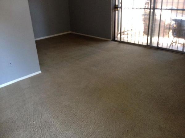 carpet-3-after